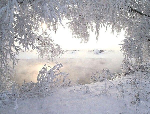 живые картинки зимы