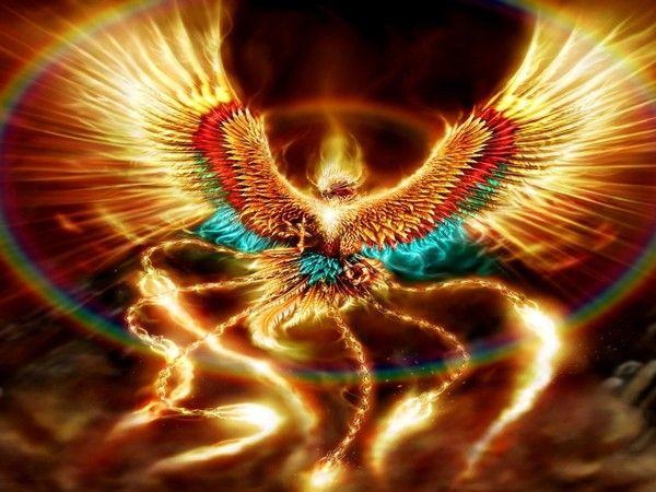 Images phoenix page 2 - Photo de phenix ...