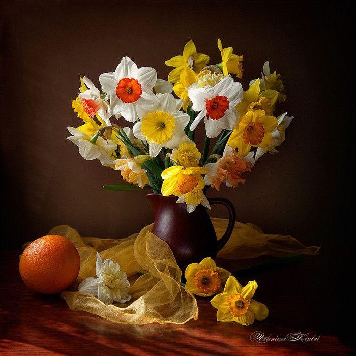 images bouquet de fleurs page 19. Black Bedroom Furniture Sets. Home Design Ideas